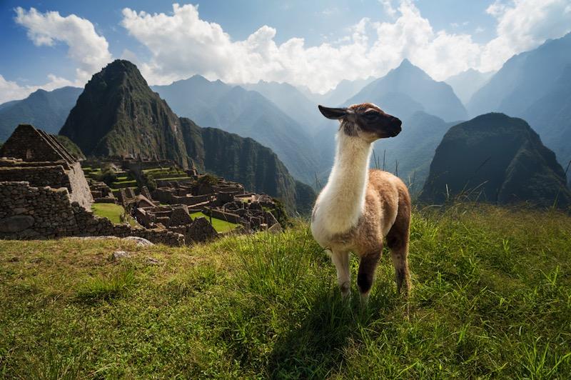 5 cosas que hay que disfrutar en Perú