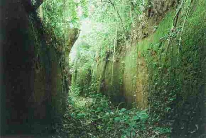 Restos de los muros / foto Kingdom of Benin