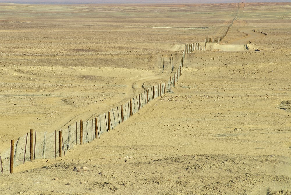 Dingo Fence, la valla de más de 5.000 kilómetros que atraviesa Australia