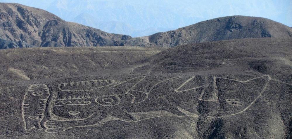 La representación de una orca hallada en 2013 es el geoglifo más antiguo de las Líneas de Nazca