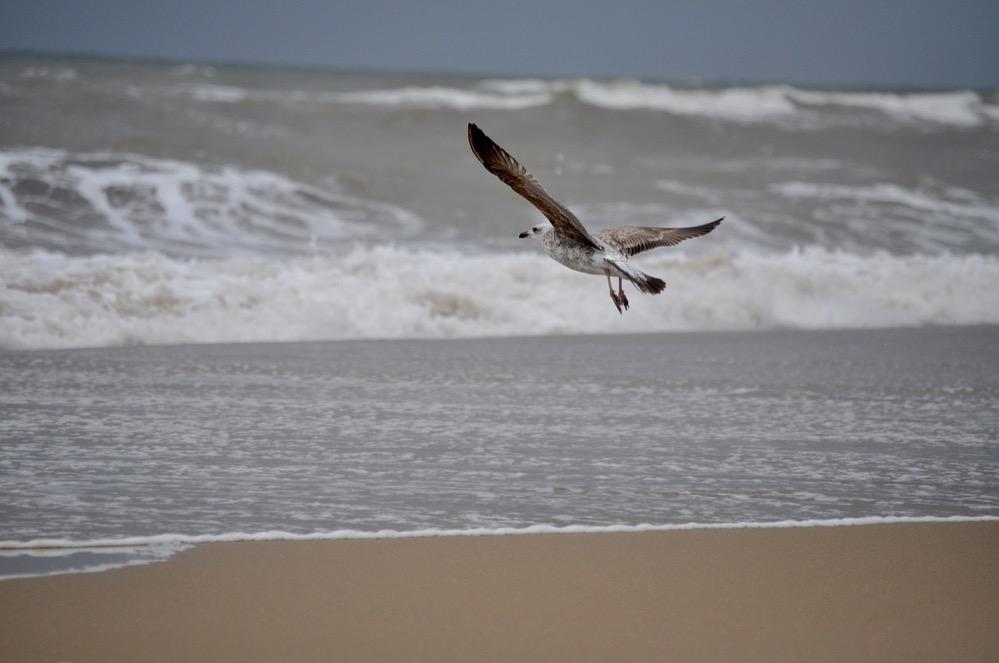 ¿Conoces las mejores playas de Huelva?