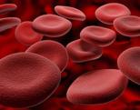 ferro_sangue