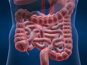 Malattie croniche intestinali
