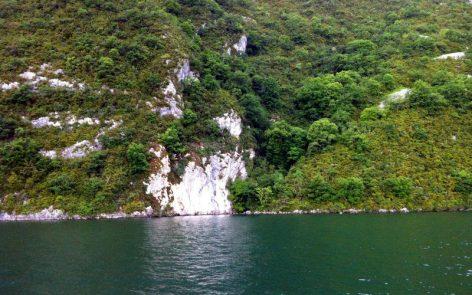 Chemin du Curé site de plongée Lac du Bourget