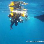 Plongee epave Togo cavalaire deep CCR Tartiflette Team