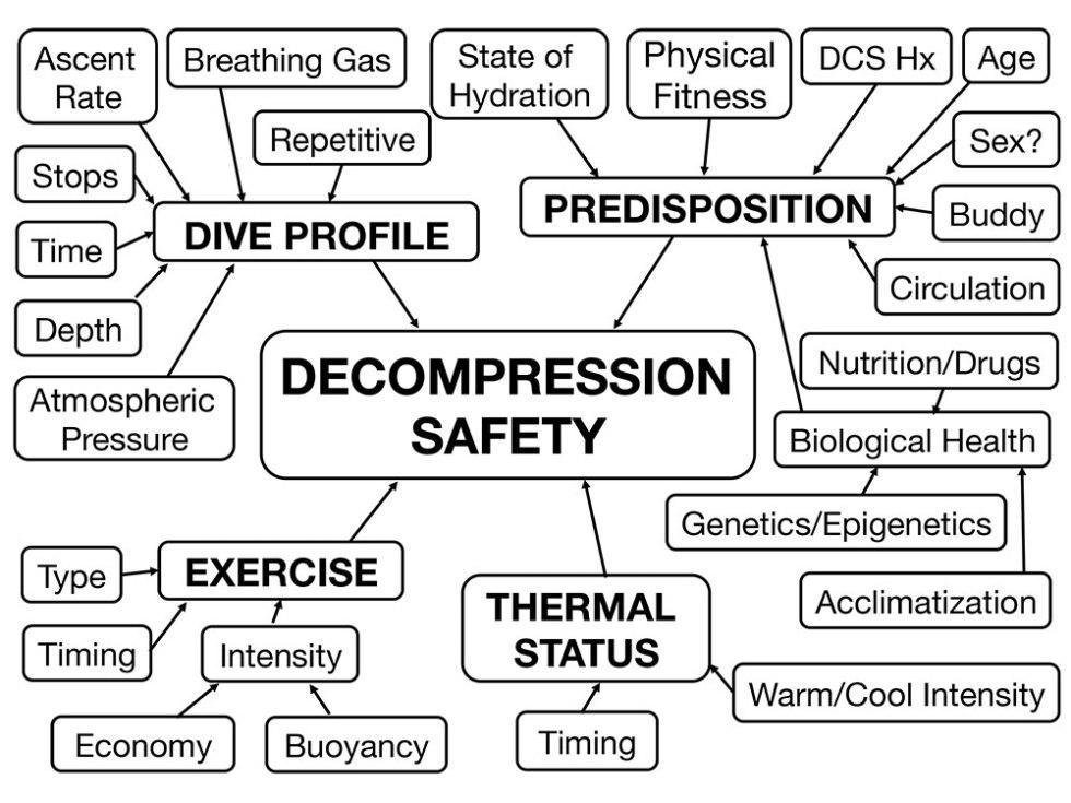 L'importance de l'alimentation & hydratation en plongée jouent sur les facteurs de sécurité de votre décompression