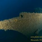 Le mat de misaine de l'épave du voilier Alain à Saint Raphael a disparu