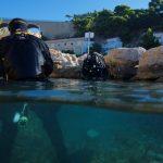 Plongée Recycleur dans la calanque de Mejean