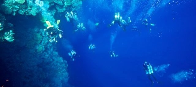 Formation plongée