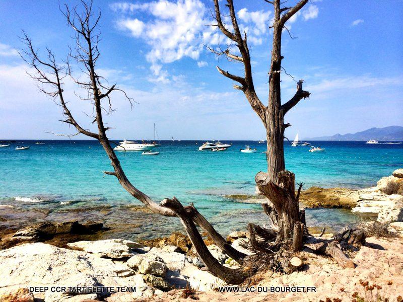 Plongée Corse