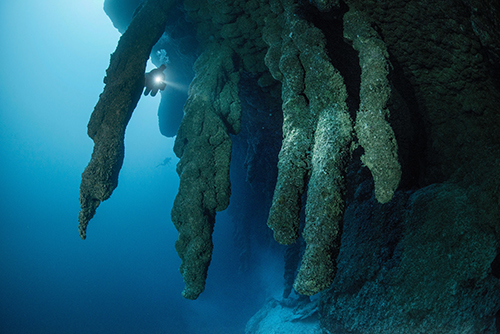Stalactites et stalacmites du Blue Hole de Belize