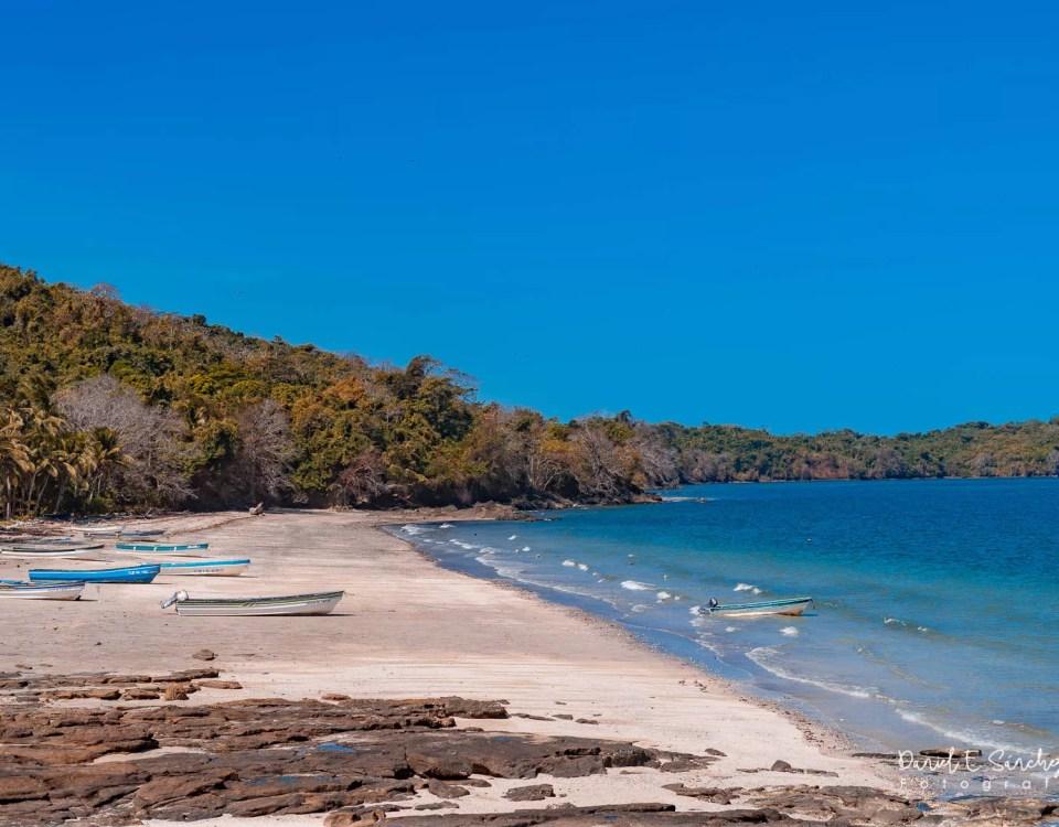 Isla Pedro González
