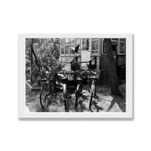 Sandra Sedan Fotografia - La Caja de Bruno