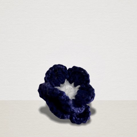 Dunkelblaue Ansteckblume mit weisser Blüte