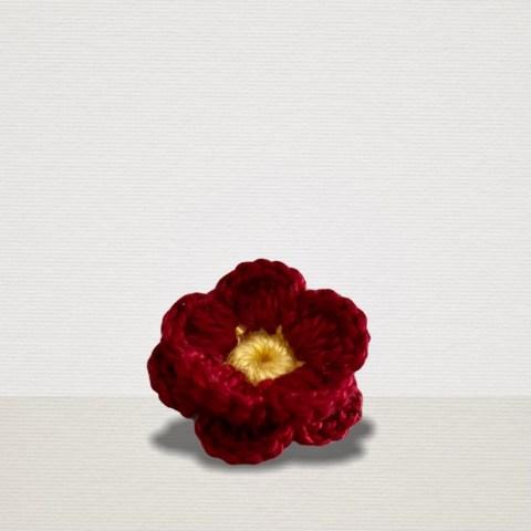 Rote Ansteckblume mit gelber Blüte