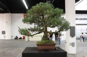 El arte del Ikebana