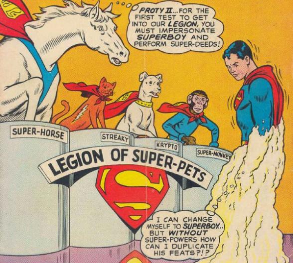 legion-super-macotas