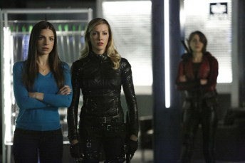 Vixen en Arrow (11)