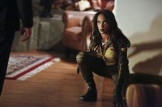 Vixen en Arrow (2)