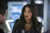 Vixen en Arrow (20)