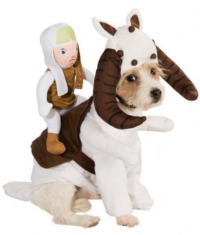 movies-tauntaun-dog-costume-large-290x341