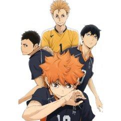 haikyuu second season vol 5 bluray cd 460543.2