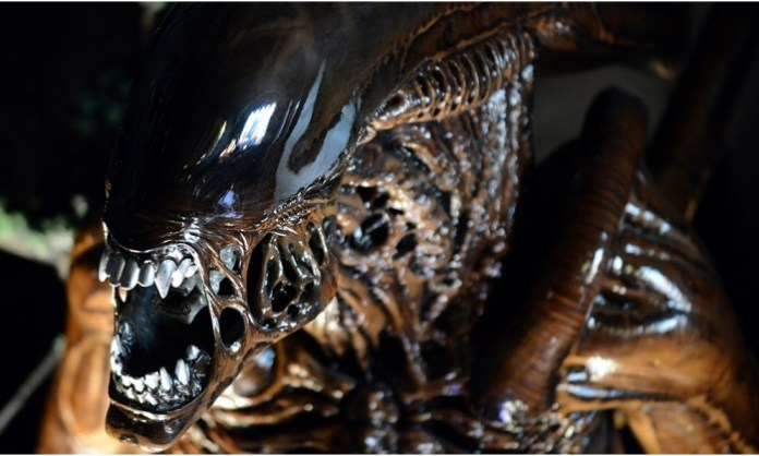 best alien movies ranked feat