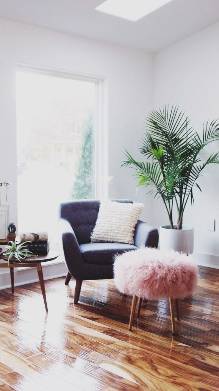 decorating with plants 7