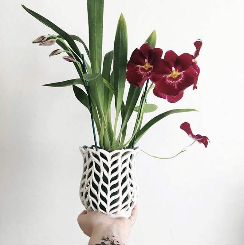 8 decorative vases that are ideal for your orchids 01