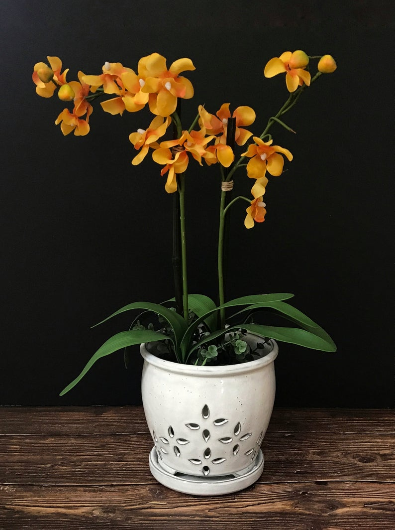 8 decorative vases that are ideal for your orchids 05