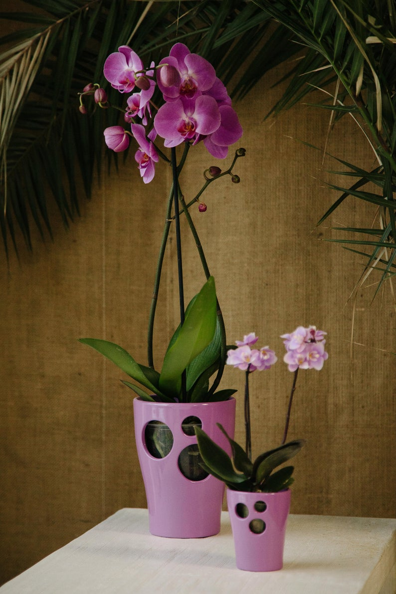 8 decorative vases that are ideal for your orchids 07
