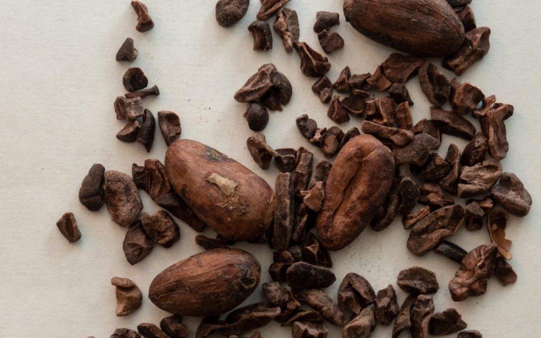 Bean-to-Bar Test Kitchen: Kokoa Kamili Tanzanian cacao