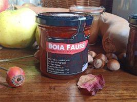 Conserve Boia Faus