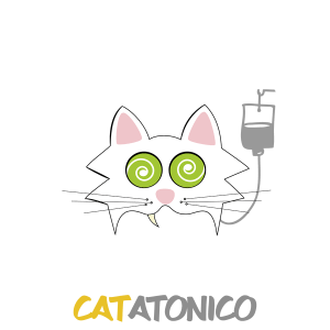 Catatonico