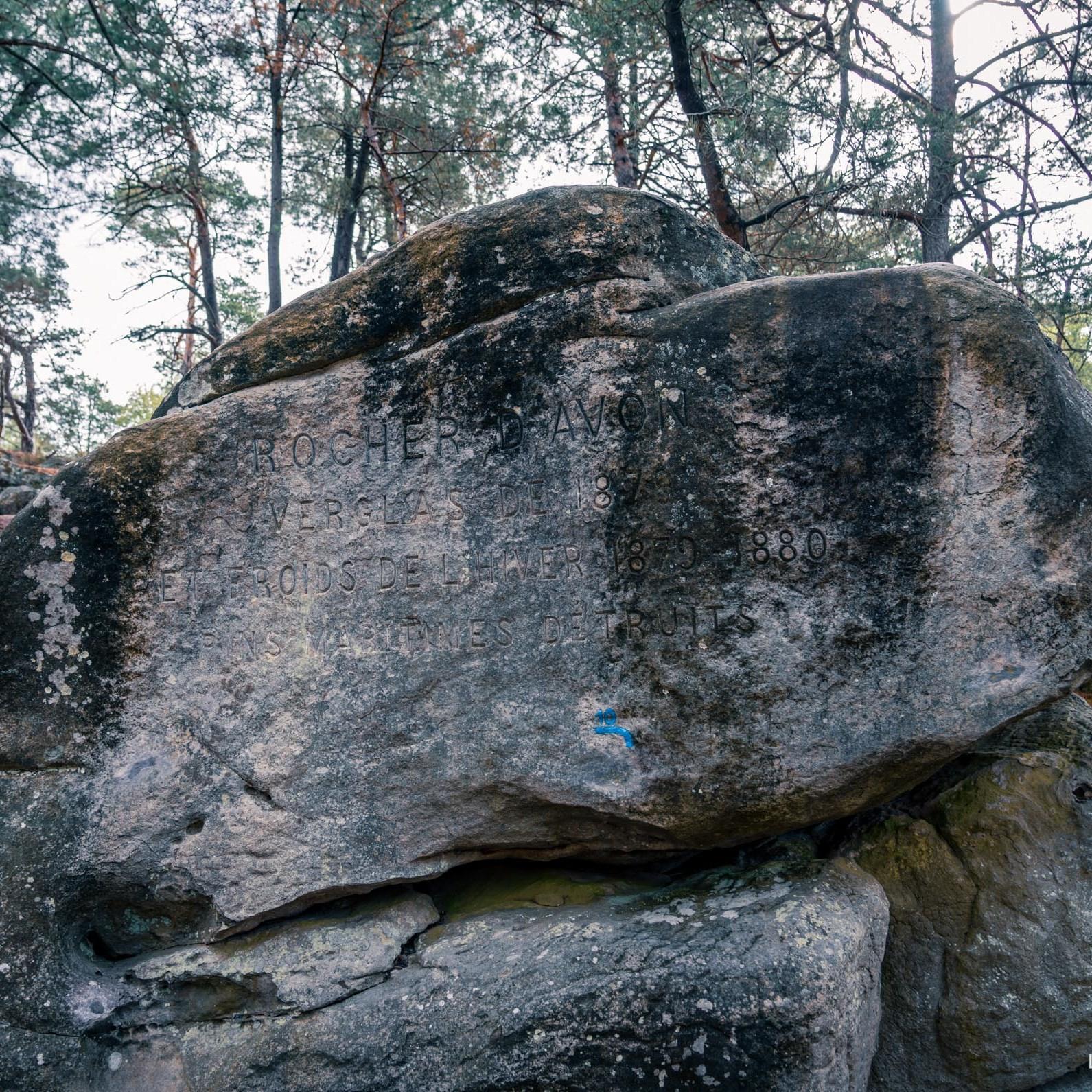 Où courir en forêt de Fontainebleau ? 50