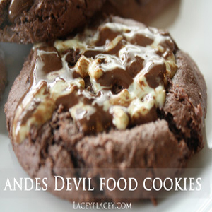 Andes Devil Food Cookies