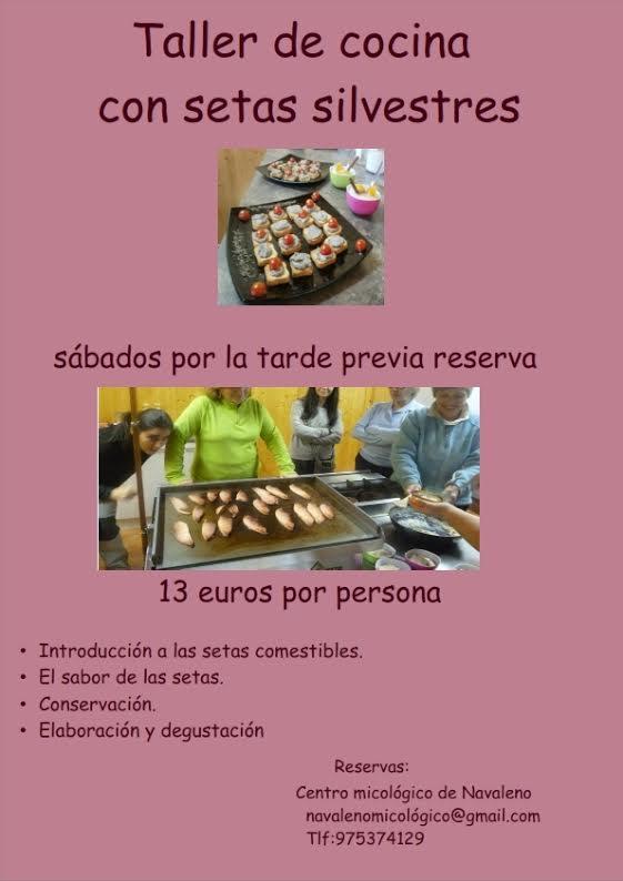 cocinar setas soria navaleno taller degustacion