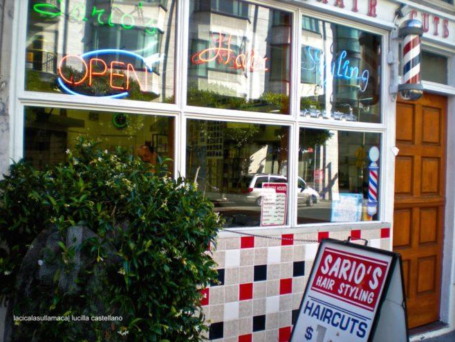 San Francisco_Cosa vedere10