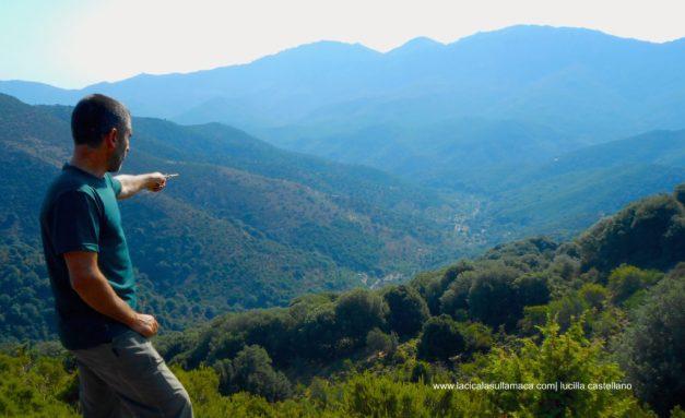 Sardegna occidentale cosa vedere: i boschi in Barbagia