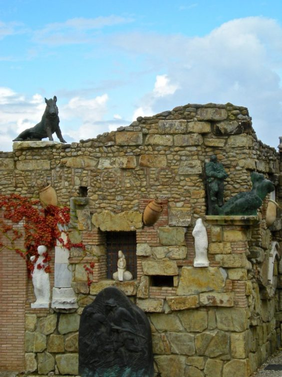 Montalcino_cinghiale