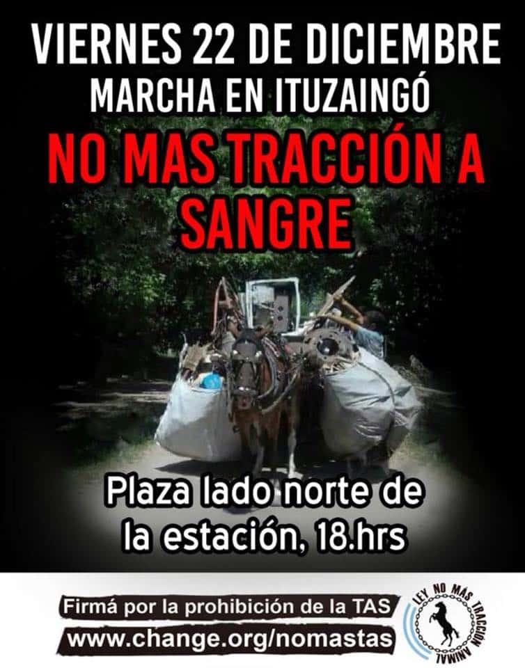 Marcha en Ituzaingó por no más tracción a sangre