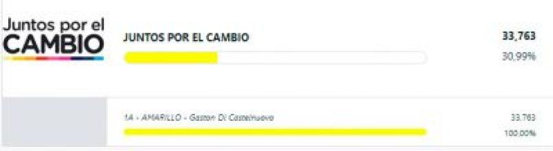 Resultados finales: Marasco ganó la interna de Lavagna y Sandra Rey llegó al 4% 7
