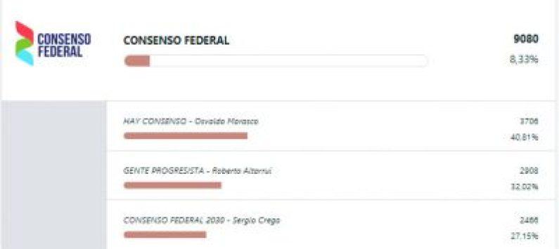 Resultados finales: Marasco ganó la interna de Lavagna y Sandra Rey llegó al 4% 8