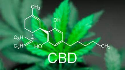 Obligan a las obras sociales a cubrir tratamientos con cannabis medicinal 1