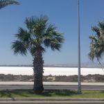 Soľne jazero
