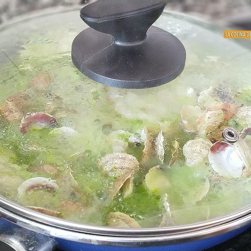 Merluza con almejas en salsa verde (5)