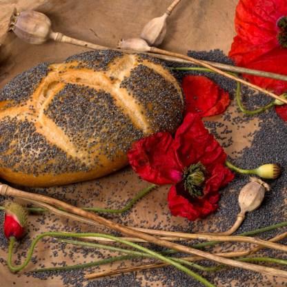 pastries-1469681_1920