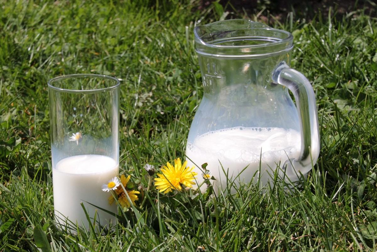 Los beneficios de la leche