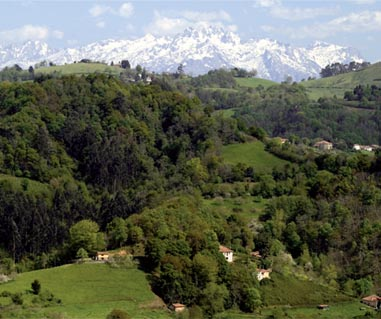 Concejo de Cabranes, La comarca de la sidra, entre el mar y la montaña