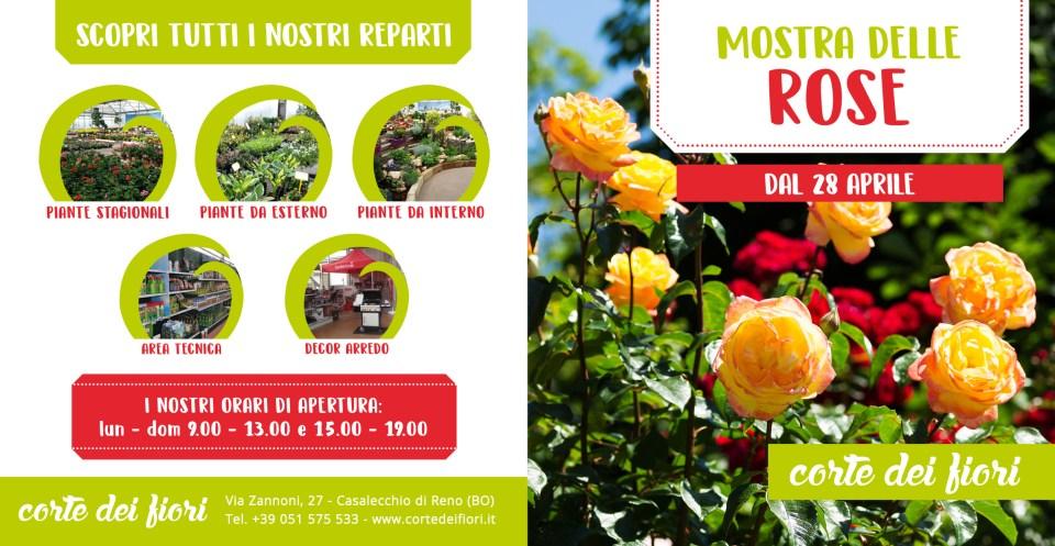 Pieghevole Rose